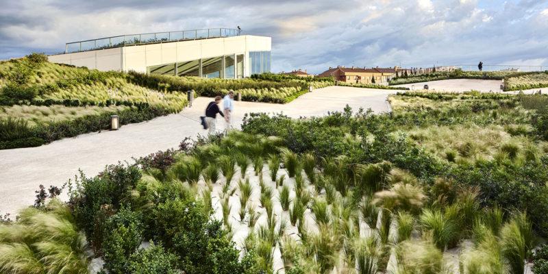 Proyecto  Parque  Felipe  VI,  Logroño,  2013